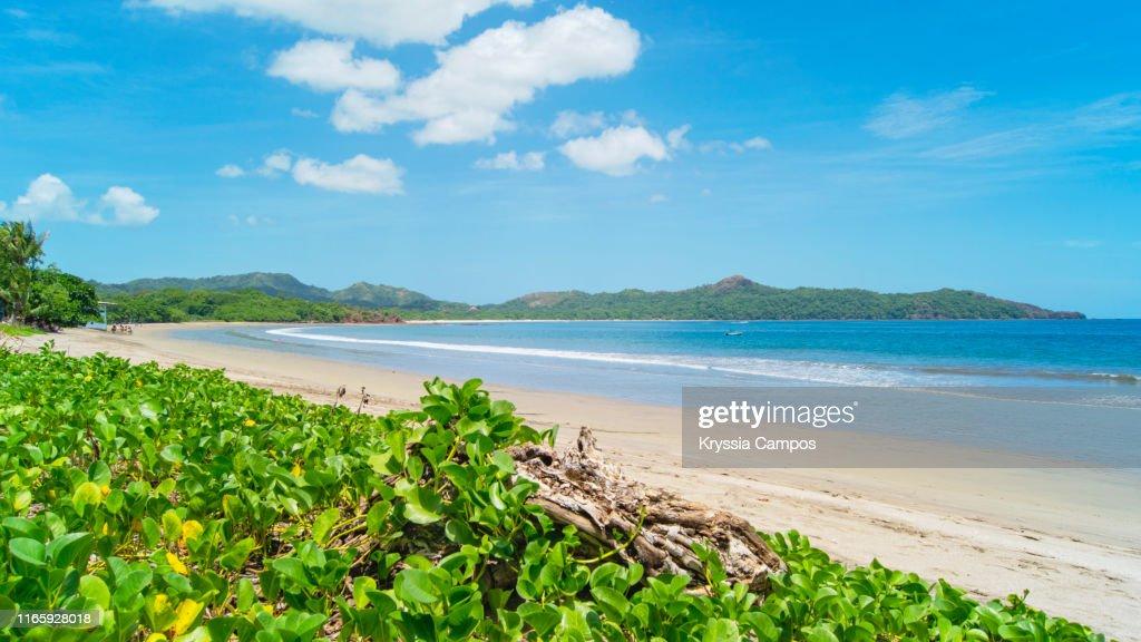 Ocean View in Costa Rica - Playa Brasilito : Foto de stock
