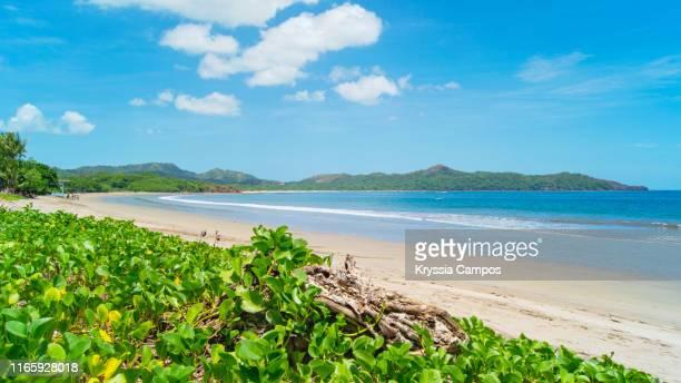 ocean view in costa rica - playa brasilito - guanacaste - fotografias e filmes do acervo