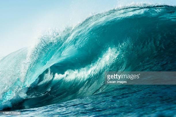 ocean wave breaking in morning light - marea fotografías e imágenes de stock