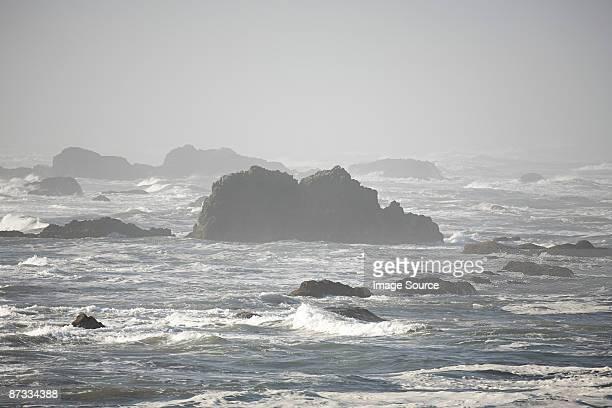 Ocean waves over seal rock