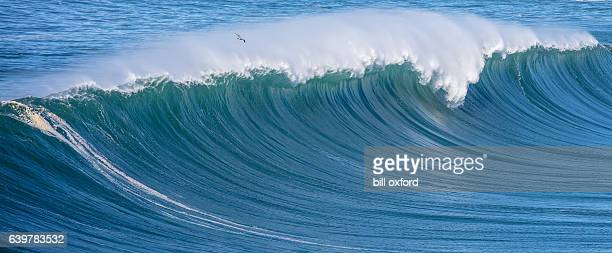 ocean waves - pacific ocean stock pictures, royalty-free photos & images