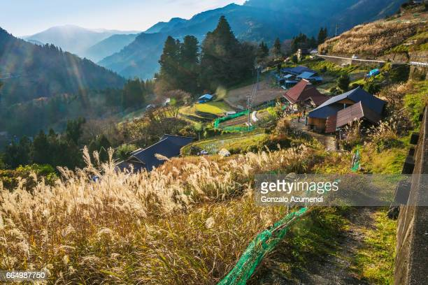 ochiai village at iya valley in japan - vale de iya - fotografias e filmes do acervo