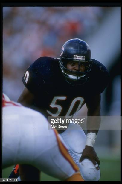 Linebacker Mike Singletary of the Chicago Bears looks on during a game against the Tampa Bay Buccaneers at Soldier Field in Chicago, Illinois. The...