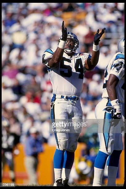 CAROLINA LINEBACKER CARLTON BAILEY CELEBRATES DURING THE PANTHERS 20-3 VICTORY OVER THE NEW ORLEANS SAINTS AT MEMORIAL STADIUM IN CLEMSON, SOUTH...