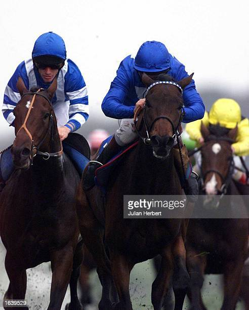 Richard Quinn brings Nowhere To Exit up the hill at Brighton to go on and win The EBF Maiden Stkes run over 1 Mile at Brighton Mandatory Credit...