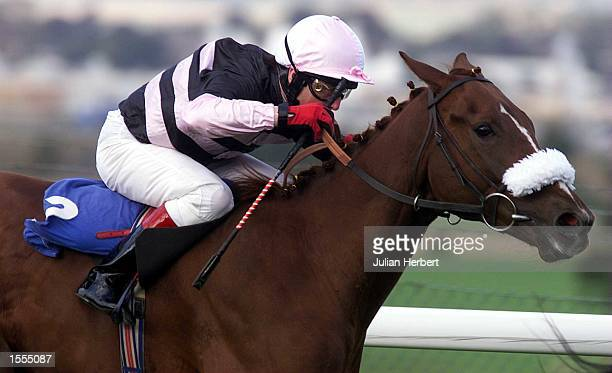 Kieren Fallon rides Risky Reef into 2ND place in The White Swan Maiden Aucttion Stakes run over 6 Furlongs at Pontefract The champion jockey is on...