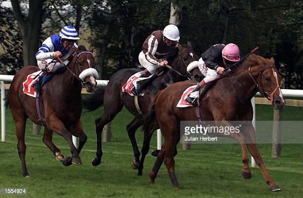 Pat Eddery and Ellens Lad swoop to land The Phantom House Rated Stakes run over 5 Furlongs at Newmarket Mandatory Credit Julian Herbert/ALLSPORT