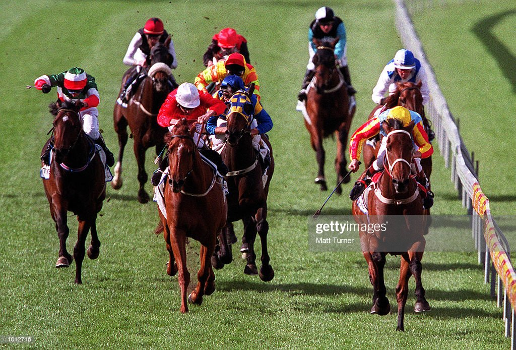 'sunline'' (rails) with jockey Greg Childs win the 1999 BMW Cox Plate, second place was ''Tie the Knot'' and third was 'sky Heights'' the race was held at held at Moonee Valley Race Course , Melbourne, Australia. Mandatory Credit: Matt Turner/ALLSPORT