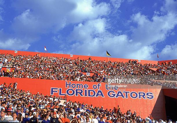 General view of the crowd watching the game between the Florida Gators and the Auburn Tigers at the Ben Hill Griffin Stadium in Gainsville, Florida....