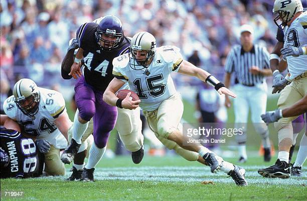 Drew Brees of the Purdue Boilermakers runs with the ball as Billy Silva of the Northwestern Wildcats runs after him during the game at Ryan Field in...