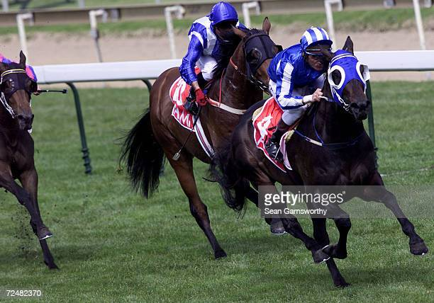 Jockey Damien Oliver on horse Amalfi wins race 5 during the 2001 Caulfield Cup Race day at Caulfield Racecourse in Melbourne Australia DIGITAL IMAGE...