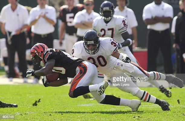 Peter Warrick of the Cincinnati Bengals dives for yardage against the defense of Mike Brown of the Chicago Bears during the game at Paul Brown...