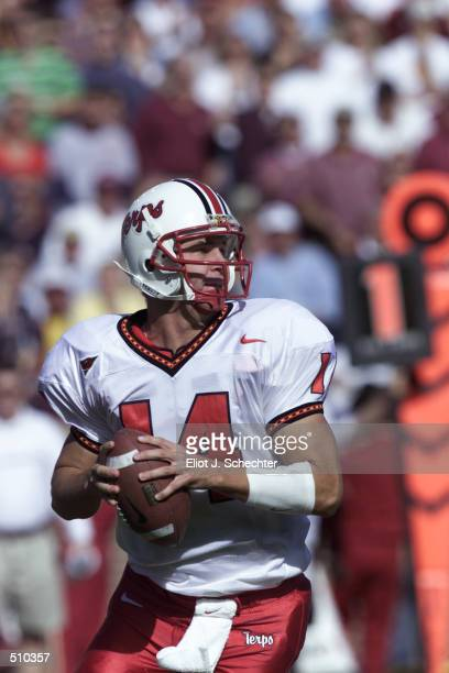 Shaun Hill of Maryland prepares to throw a pass against Florida State during the game at Doak Campbell Stadium in Tallahassee Florida Florida State...