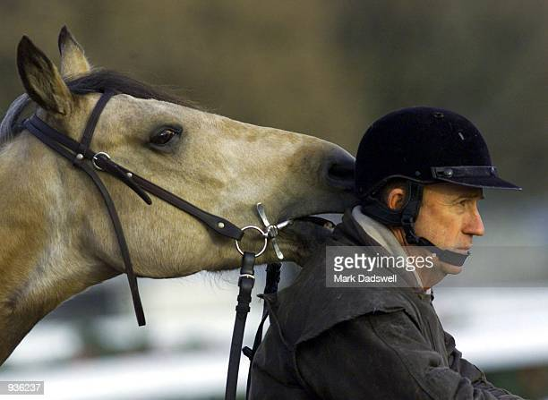 Trainer Brian MayfieldSmith gets a nibble on the ear from his horse as he watches this mornings trackwork at Flemington Racecourse as horses are...