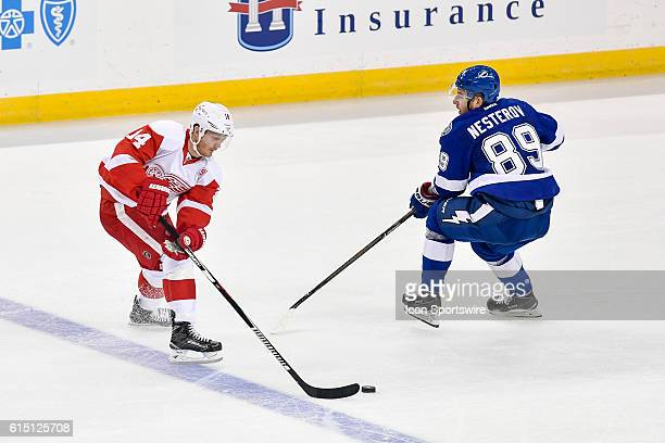 Detroit Red Wings right wing Gustav Nyquist unbalances Tampa Bay Lightning defender Nikita Nesterov as he cuts to the center of the ice during an...
