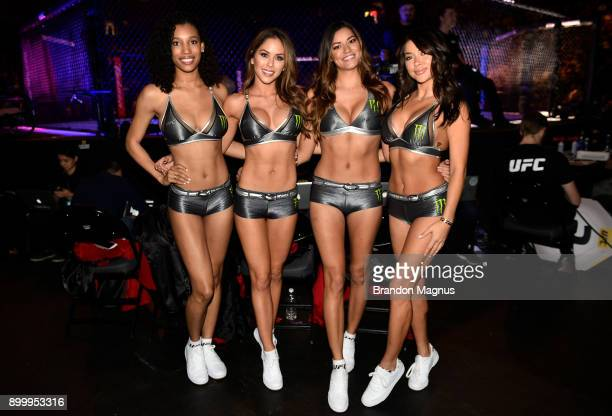 UFC Octagon Girls Brooklyn Wren Brittney Palmer Vanessa Hanson and Arianny Celeste pose for a photo during the UFC 219 event inside TMobile Arena on...
