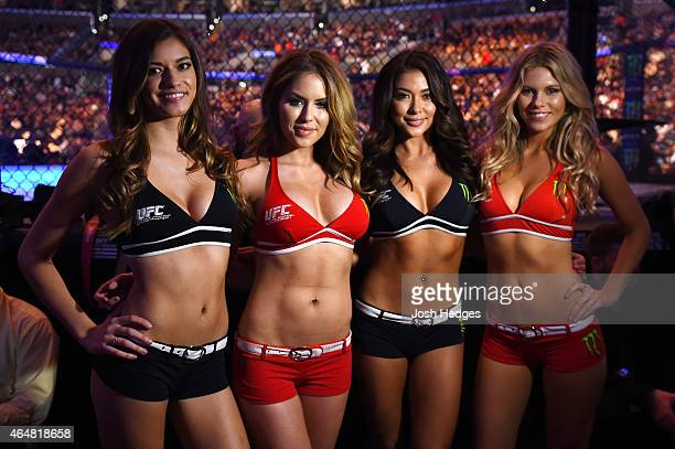 UFC Octagon girls Vanessa Hanson Brittney Palmer Arianny Celeste and Chrissy Blair pose for pictures during the UFC 184 event at Staples Center on...