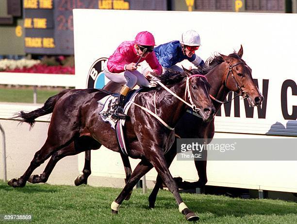 Octagonal riden by Shane Dye defeats Mahogany riden by G Hall in the BMW Cox Plate on 28 October 1995 THE AGE SPORT Picture by VINCE CALIGIURI