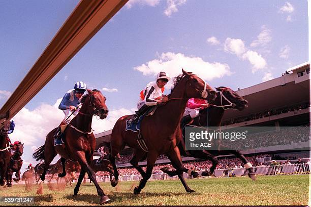 Octagonal right heads for victory on 22 march 1997 THE AGE SPORT Picture by TIM CLAYTON