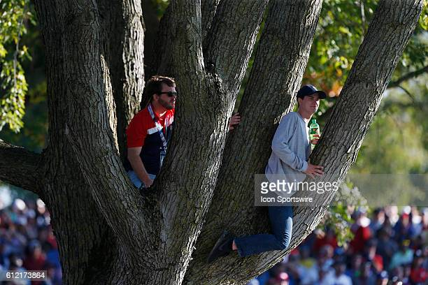 Chaska MN USA Fans climb up in a tree to watch on the 16th hole during the Day 2 afternoon matches during the 2016 Ryder Cup at Hazeltine National...