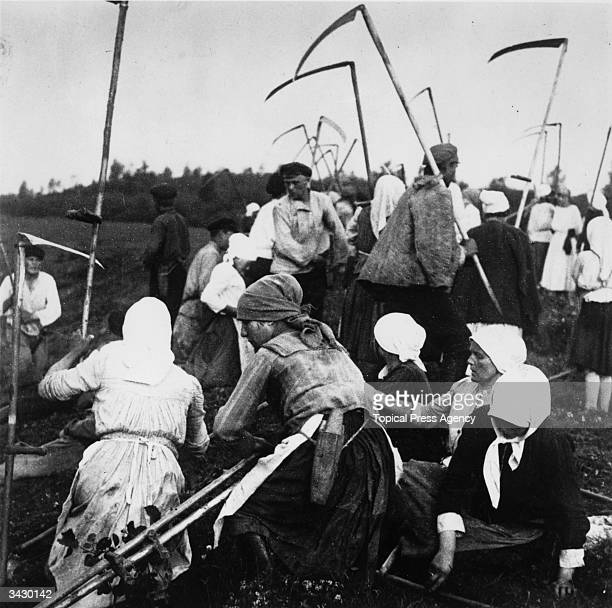 Russian peasants collect their scythes and prepare to harvest their crops