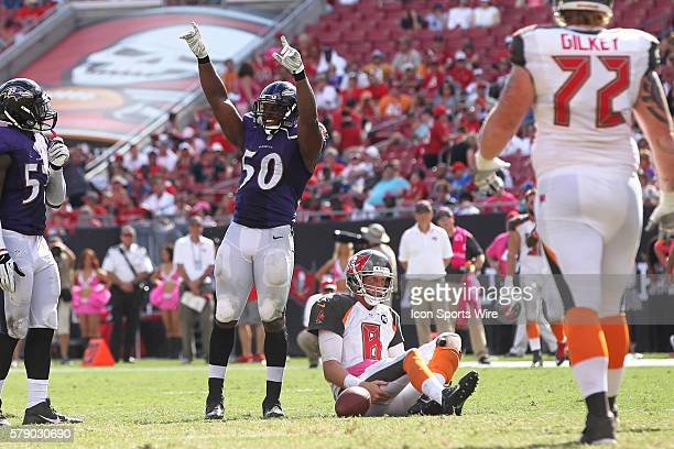 Baltimore Ravens outside linebacker Albert McClellan celebrates after sacking Tampa Bay Buccaneers quarterback Mike Glennon on a 4th down play in the...