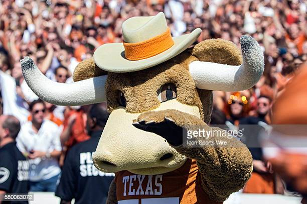 Texas Longhorns Mascot Hook'em hugs fans during the Oklahoma Sooners versus the Texas Longhorns in the Red River Rivalry at the Cotton Bowl in...