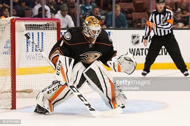 Anaheim Ducks goalie Jonathan Bernier in goal during the 3rd period of a preseason NHL game between the San Jose Sharks and the Anaheim Ducks at the...