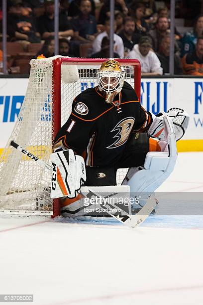 Anaheim Ducks goalie Jonathan Bernier in goal during the 3rd period of a preseason NHL game between the San Jose Sharks and the Anaheim Ducks at the...
