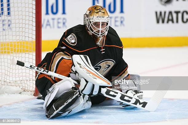Anaheim Ducks goalie Jonathan Bernier stretches during the 1st period of a preseason NHL game between the San Jose Sharks and the Anaheim Ducks at...