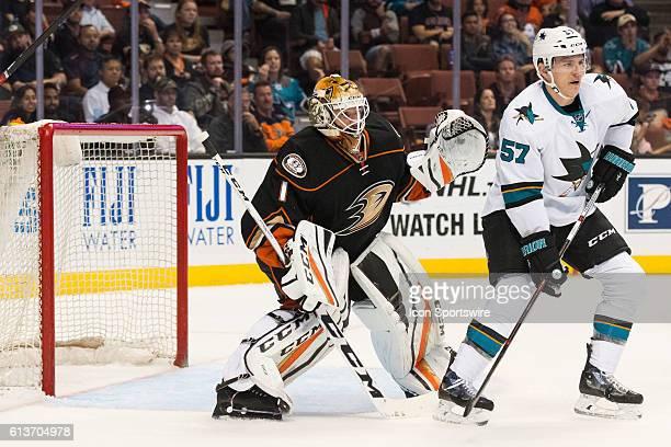 San Jose Sharks center Tommy Wingels blocks Anaheim Ducks goalie Jonathan Bernier during the 3rd period of a preseason NHL game between the San Jose...