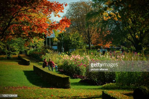 Autumn atmosphere with sunny weather in the Britzer garden The landscape park was created for the 1985 Federal Horticultural Show Photo Jens...