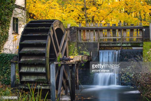 The mill wheel stands still at the Bremsdorf mill in the autumnal Schlaubetal Nature Park The Schlaubetal Nature Park founded at the end of 1995 in...
