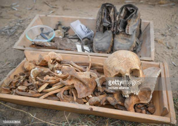 The mortal remains as well as shoes and other objects of a German soldier were taken from the German army by members of the Verein zur Bergung...