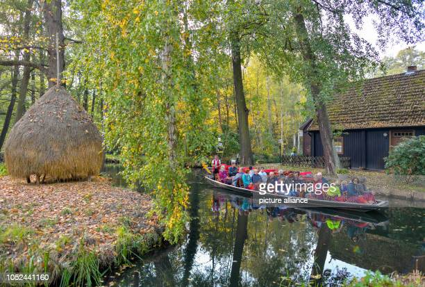Tourists take a boat across a river in the autumnal Spreewald Photo Patrick Pleul/dpaZentralbild/ZB