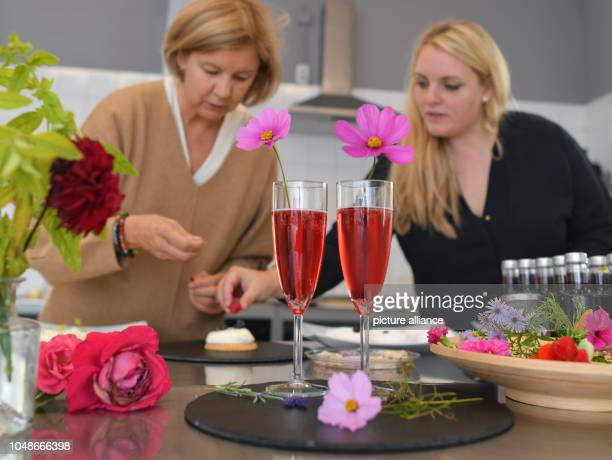 08 October 2018 Brandenburg Schoeneiche Martina GöldnerKabitzsch owner of the Blythen manufactory and her colleague Diana Schumm work in the kitchen...