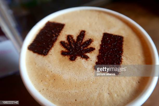 In the cafe Cannabis Coffee there is a cannabis leaf as a marijuana symbol on the milk foam of a Latte Macchiato On marijuana will be legalized...