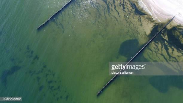 October 2018, Mecklenburg-Western Pomerania, Koserow: Walkers walk along the coastal protection groynes on the beach of the Baltic seaside resort on...