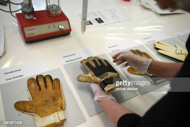 12 October 2018 North RhineWestphalia Duesseldorf 12 October 2018 Germany Duesseldorf A restorer is holding a goalkeeper glove of Wolfgang Kleff...