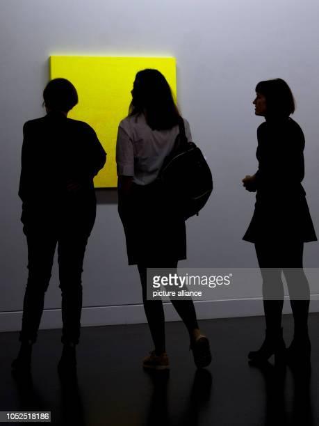 Participants of a preview visit the Museum Gunzenhauser of the Kunstsammlungen in Chemnitz to see the work 'Gelb moduliert' by Rupprecht Geiger Under...