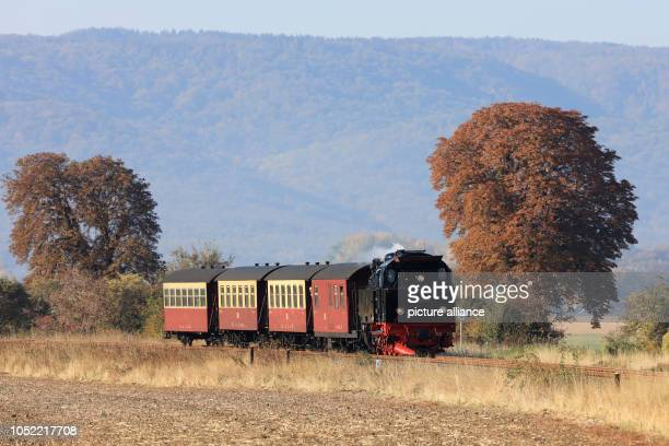 A train of the Harzer Schmalspurbahn running through the autumnal Selketal near Gernrode in the Harz mountains Since a few days the locomotive with...