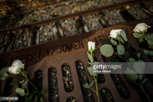 """October 2019, Berlin: White roses lie on the platform along the tracks at the memorial """"Gleis 17"""" in the Grunewald district. From the Grunewald..."""