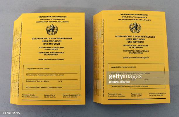 10 October 2019 MecklenburgWestern Pomerania Rostock Vaccination cards are available at the health department The flu vaccinations have started...