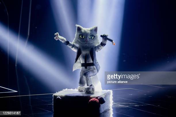 "October 2020, North Rhine-Westphalia, Cologne: The character ""The Cat"" is on stage in the prose seven show ""The Masked Singer"". Photo: Rolf..."