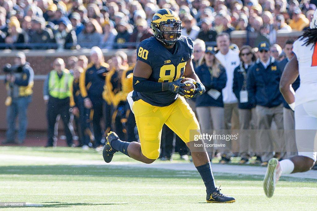 NCAA FOOTBALL: OCT 22 Illinois at Michigan : News Photo