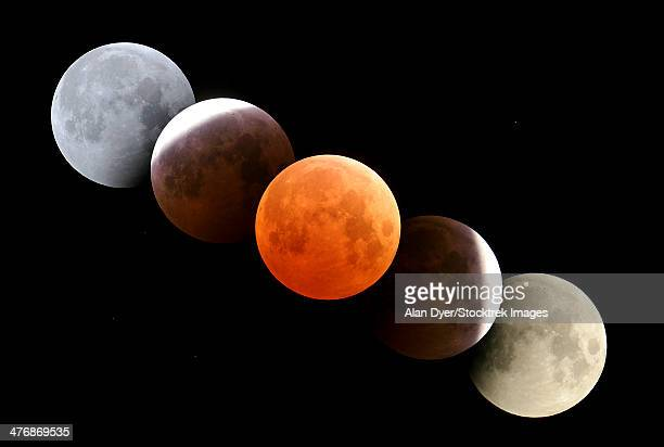 October 27, 2004 - Digital composite of total lunar eclipse taken from Alberta, Canada.