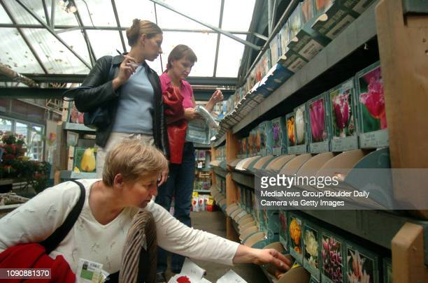 October 6 2004 / Boulder CO / Aina Prischepa left from Estonia Luda Gean and Inga Tamayo from Ukraine look through bulbs they plan to bring home with...