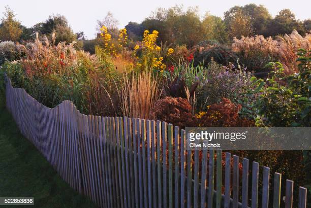 October border of mixed grasses and perennials beside fence