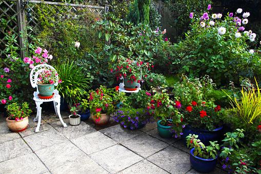 October English garden still full of flowers. - gettyimageskorea