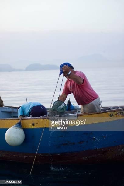 Octopus fishing with fish traps Gulf of Pozzuoli Campi Flegrei Naples Campania Italy